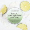 Blushberry Botanicals - Exfoliating Face Scrub - Coconut & Lime
